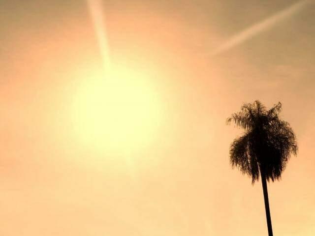Sol intenso na região da avenida Duque de Caxias, em Campo Grande (Foto: Henrique Kawaminami)