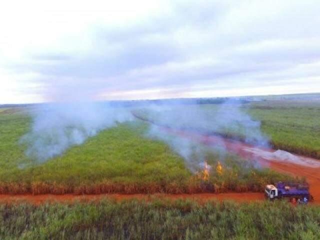Queima de cana em Nova Alvorada do Sul, região onde atividade é permitida. (Foto: PMA/Divulgação/Arquivo)