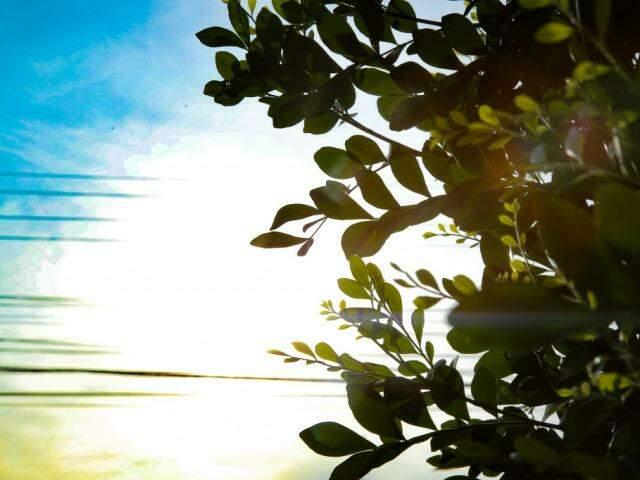 Sábado deve iniciar com sol em todo o Estado (Foto: Kísie Ainoã)