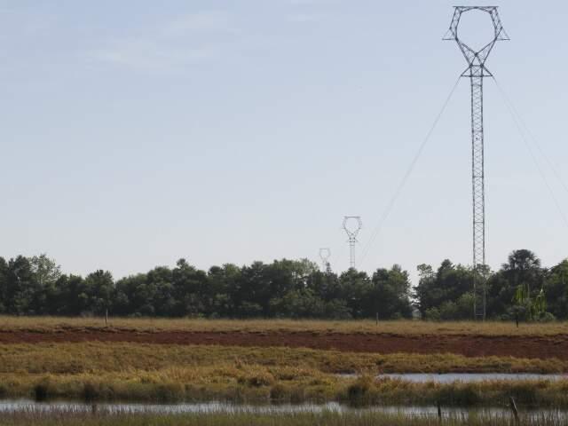 Imasul suspendeu licença de instalação de linha de transmissão que é apontada como ameaça a córrego. (Foto: Marcelo Victor)