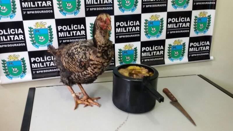 Frango encontrado na casa e a panela com a ave abatida (Foto: Osvaldo Duarte)