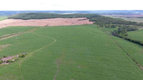 Fazendeiro é multado em mais de R$ 43 mil por desmatamento florestal