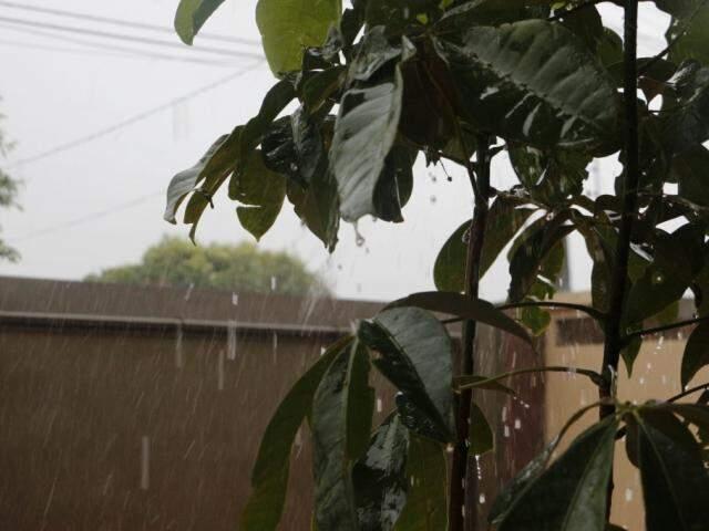 Chove forte em Dourados nesta segunda-feira (Foto: Helio de Freitas)