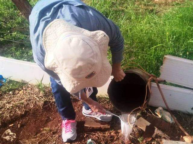 Agente de endemias durante mutirão em Dourados (Foto: Divulgação)