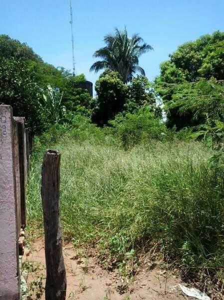 O terreno está sem manutenção há oito meses. (Foto:Direto das Ruas)