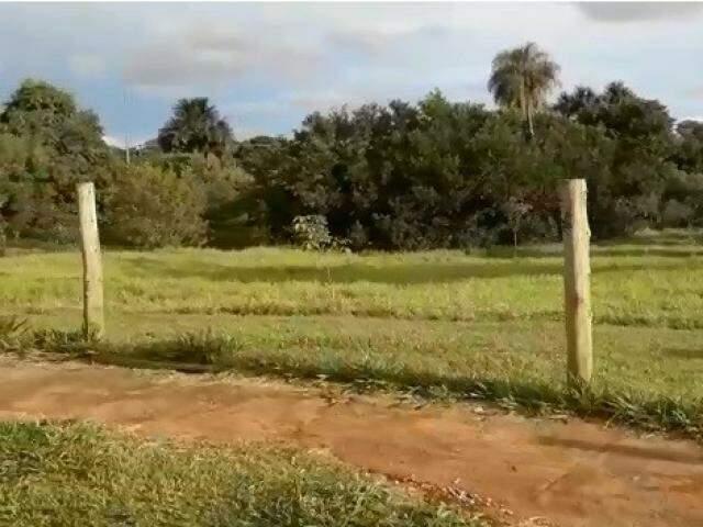 Cercas do Parque Água Limpa estão sem arame de proteção (Foto: Direto das Ruas)