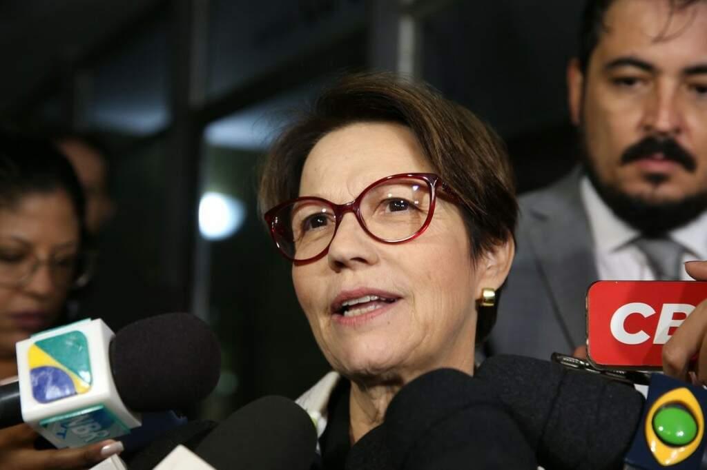 A deputada Tereza Cristina, que vai assumir o Ministério da Agricultura. (Foto: Antonio Cruz/ Agência Brasil)