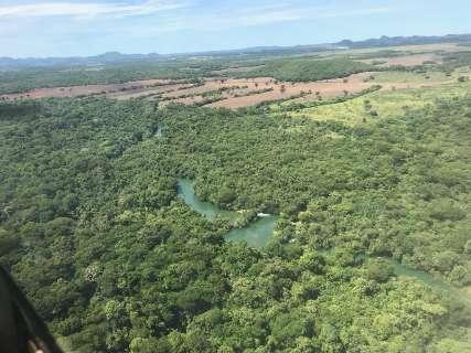 Assim como o Rio da Prata, outros da bacia do Miranda estão sob ameaça