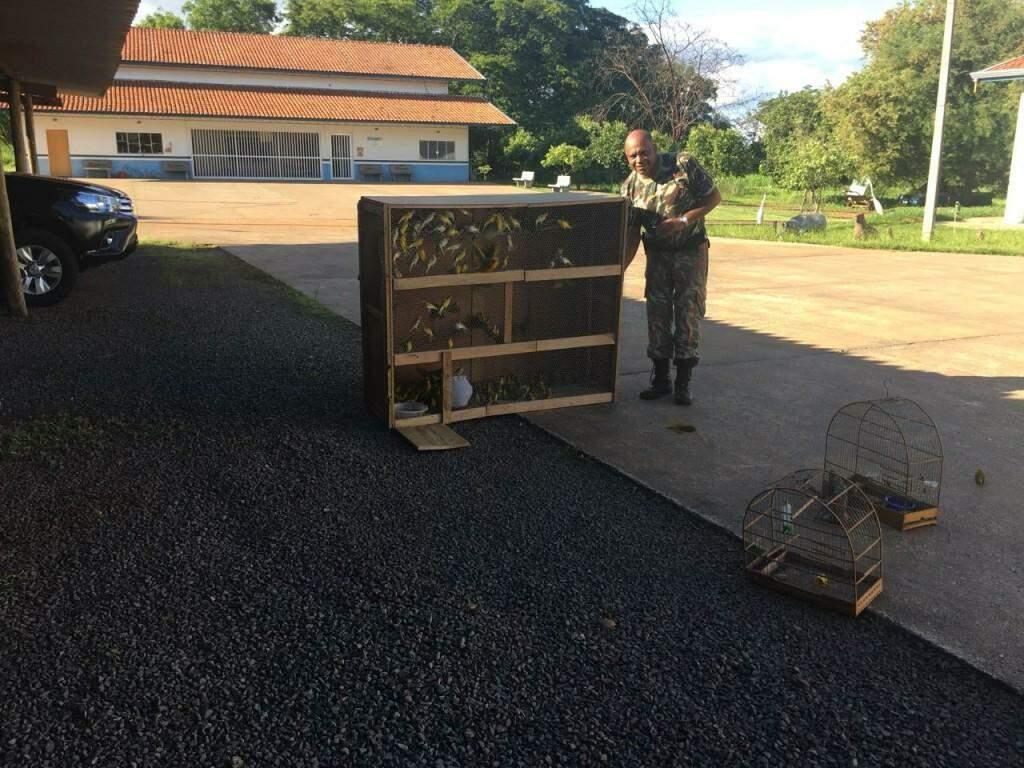 Policial militar ambiental e canários apreendidos em cativeiro (Foto: Divulgação/ PMA)