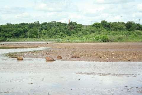 UFMS não adota medidas suficientes e Lago do Amor pode secar até 2042