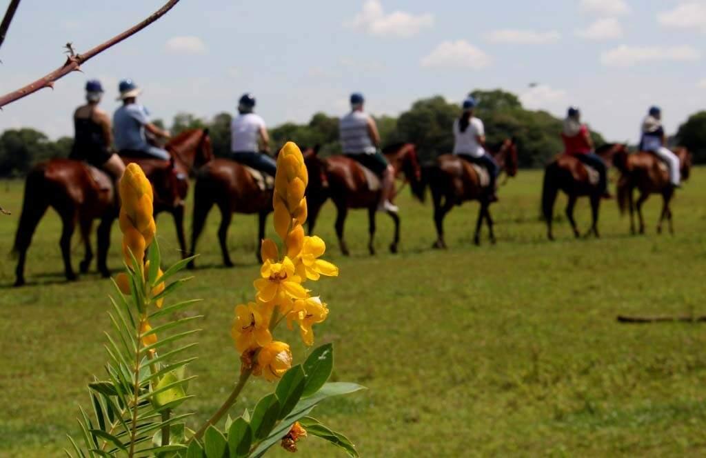 Cavalgada na Estrada Parte: turismo e meio ambiente.