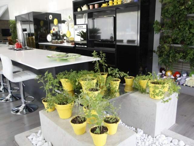 Em vasos, horta orgânica traz o frescor dos temperos para dentro da cozinha. (Fotos: Cleber Gellio)