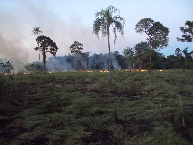 Segundo a PMA, incêndio atingiu 2 mil hectares. (Foto: Divulgação)