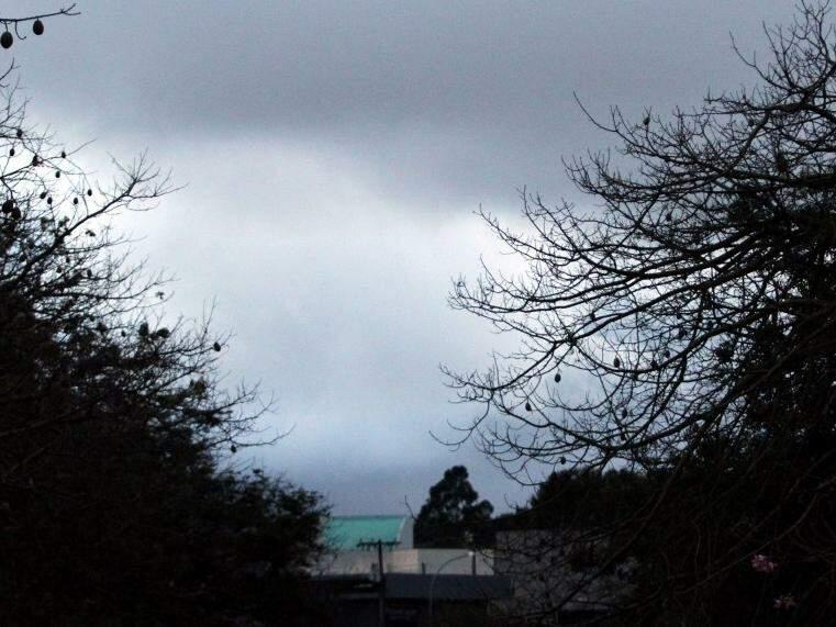 Galhos de árvores na Avenida Ricado Brandão compõem cenário com céu fechado de Campo Grande nesta manhã (Foto: Saul Schramm)