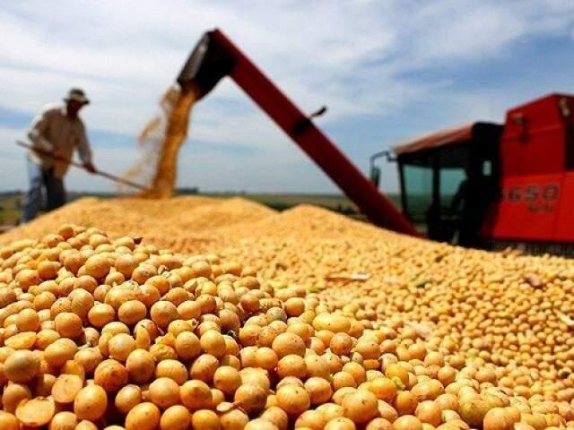 Valor bruto da produção da soja cresceu 24,63% em 2018 (Foto/Divulgação: Semagro)