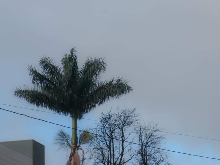 Dia amanheceu mais quente em Campo Grande, mas com céu nublado bem nublado (Foto: Henrique Kawsaminami)