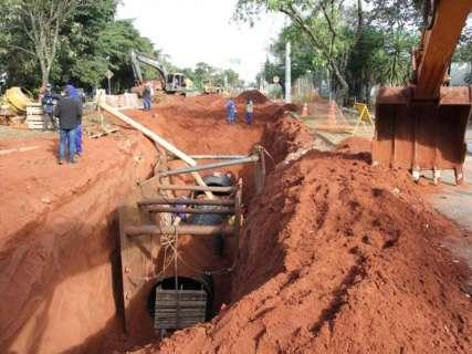 Parque dos Poderes perde mais uma área de mata para obras de drenagem