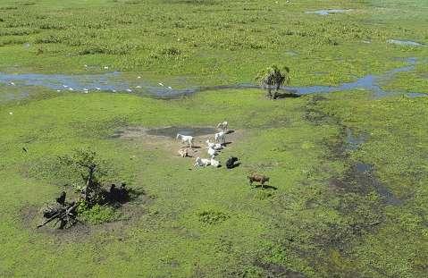 Programa tira dúvidas de produtores sobre cadastro ambiental obrigatório