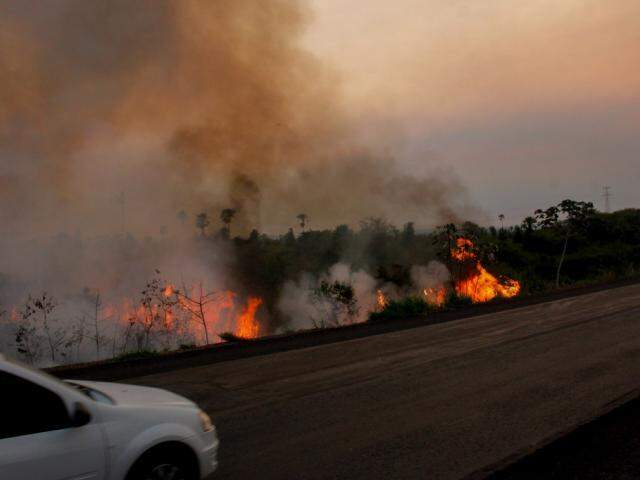 No Pantanal sul-mato-grossense foram registrados 1.709 focos de fogo entre o dia 1° e 29 de outubro (Foto: Chico Ribeiro)