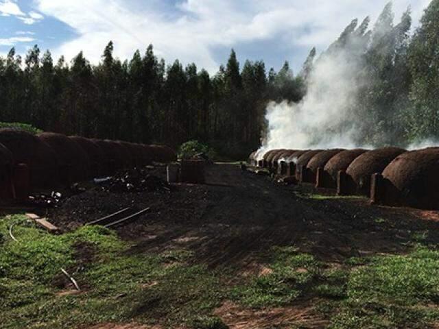 Carvoaria onde os seis trabalhadores viviam e trabalhavam. (Foto: Divulgação/MPT)