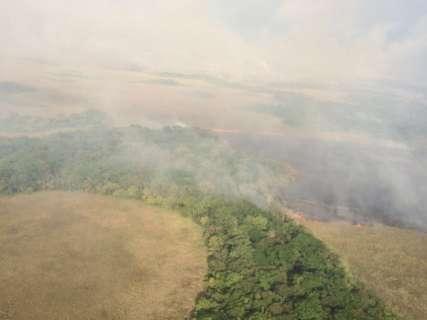 Incêndio destruiu até agora, 20 mil hectares de Parque Estadual