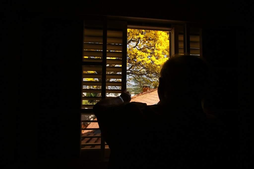 Valdir tem o privilégio de ter um dos mais bonitos ipês-amarelos da cidade bem no quintal de casa (Foto: André Bittar)