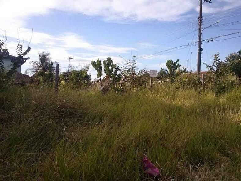 Terreno fica no cruzamento das ruas Severino Pinheiro e Cabo Verde, no bairro Tijuca I (Foto: Gilsienny A. Munhoz)