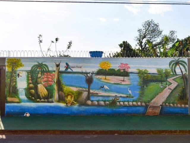 Pintura feita há um mês no muro retrata o Pantanal e a história da moradora (Foto: Alana Portela)