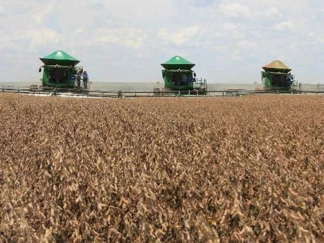 Máquinas trabalham na colheita em Mato Grosso do Sul, onde o PIB cresceu, impulsionado pela produção rural. (Foto: Arquivo)