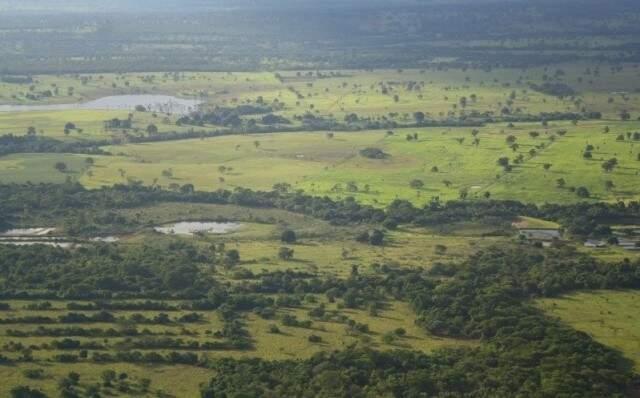 A meta voluntária a ser alcançada pelo Brasil em 2020 era de uma redução de emissões de 564 milhões de toneladas de dióxido de carbono na Amazônia e de 104 milhões de toneladas no Cerrado. (Foto: Arquivo)