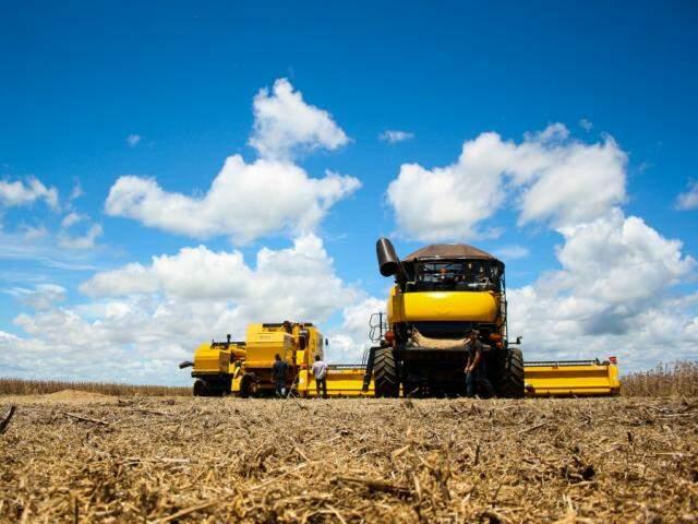 Colheita de soja em Mato Grosso do Sul (Foto: Marcos Ermínio/Aquivo)