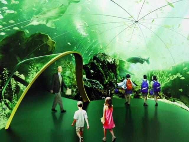 Empresa de MS está em vantagem em licitação para construir Aquário do Pantanal