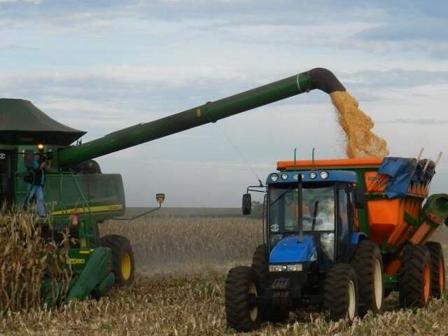 Colheita do milho no Estado começou na última semana de junho. (Foto: Famasul/ Divulgação)