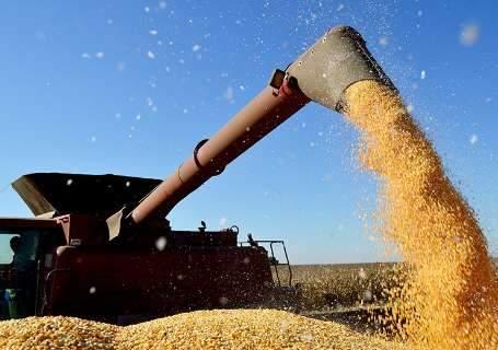 MS terá filial da trading Gavilon com originação de soja e milho