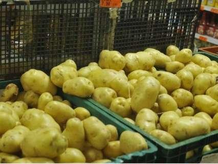 Clima continua interferindo e preço da batata sobe 40% em quatro dias