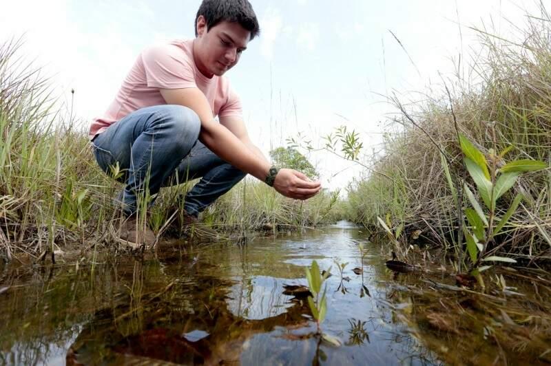 Na fazenda Meia Lua, cercamento em área de nascente melhorou qualidade da água e evitou erosões