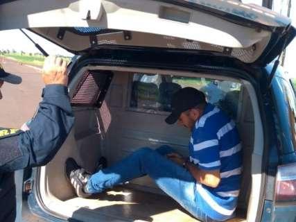 Homem preso com 940 kg de cocaína ganhou liberdade há um mês