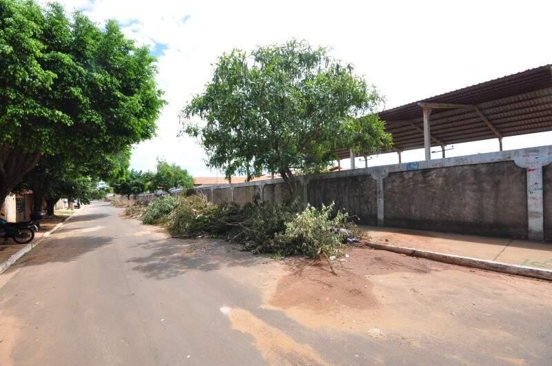 Do lado de fora da escola, galhos de poda invadem a calçada (Fotos: Luciano Muta)