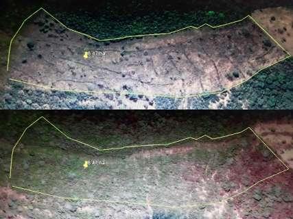 PMA multa fazendeiros em R$ 19,5 mil por desmatamentos em Camapuã