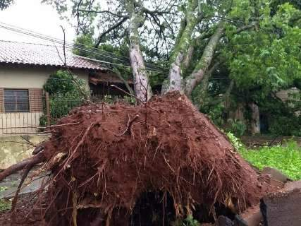 Chuva forte causou queda de energia em 8 cidades, diz Energisa