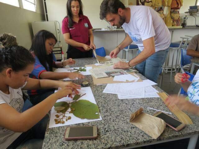 Os alunos analisando as folhas para o trabalho de identificação (Foto: Arquivo/E.M.Agrícola Gov. Arnaldo Estevão de Figueiredo)