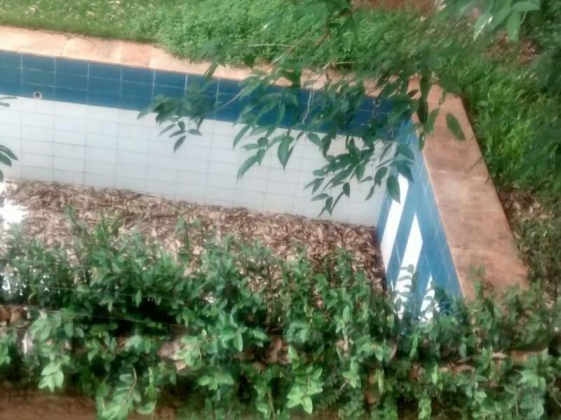 A água que se acumula ao fundo da piscina serve como criador de mosquitos, inclusive da dengue.(Foto:Direto das Ruas)