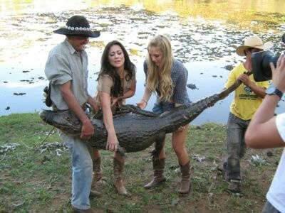 Pousada que usava jacarés como atrativo é embargada no Pantanal