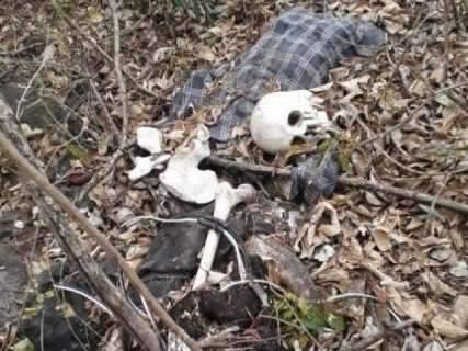 Com 5 ossadas encontradas em 15 dias, identificação depende de famílias
