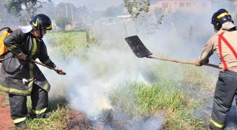 Bombeiros usam a partir de amanhã efetivo administrativo no combate a incêndios florestais