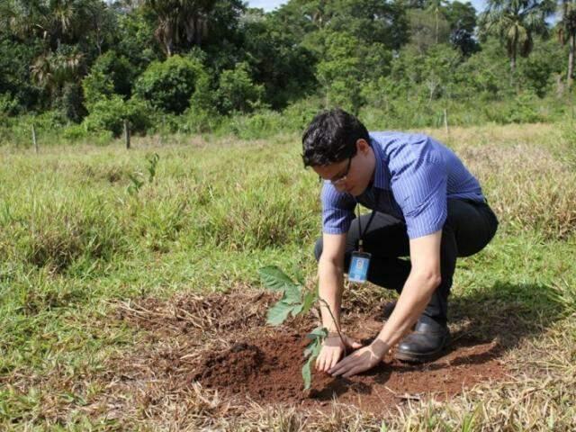 Quem contribuir com o meio ambiente poderá ser contemplado (Foto: Divulgação)