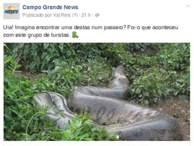 É lógico que a bagunça na prefeitura de Campo Grande iria bater recordes na rede