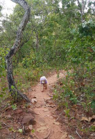 Andando na trilha (Foto: Arquivo pessoal)