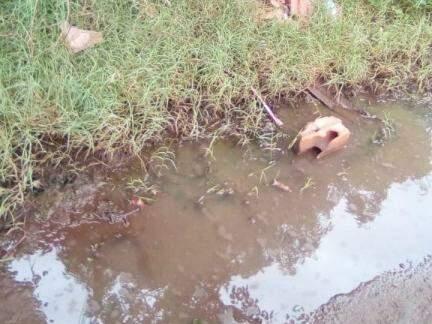Água também acumula-se no local (Foto: Direto das Ruas)
