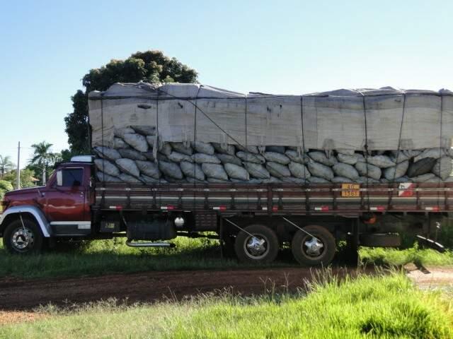 O caminhão e a carga de 55m³ de carvão foram apreendidos. (Foto: divulgação)